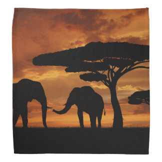 African elephants silhouettes in sunset bandanas