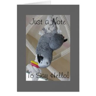 "African Grey Parrot ""Hello"" Greeting Card"