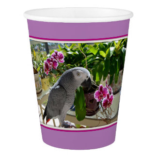 African Grey Pool Party Paper Cup
