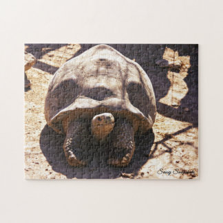 African Spurred Tortoise Jigsaw Puzzle