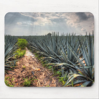 Agave Tequilana Mouse Pad