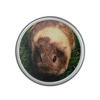Agouti Guinea Pig in the Grass Bluetooth Speaker