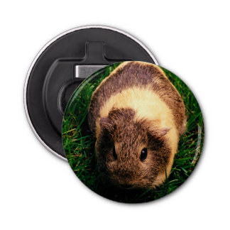 Agouti Guinea Pig in the Grass Bottle Opener