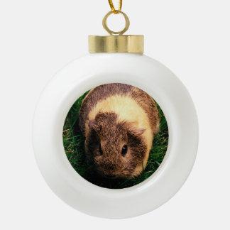 Agouti Guinea Pig in the Grass Ceramic Ball Decoration