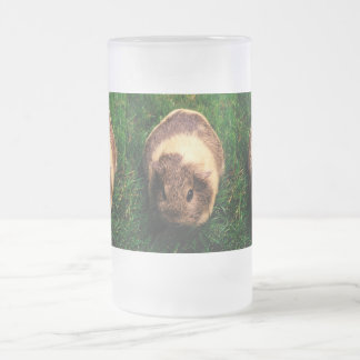 Agouti Guinea Pig in the Grass Frosted Glass Beer Mug