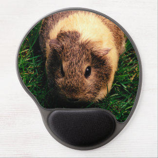 Agouti Guinea Pig in the Grass Gel Mouse Pad