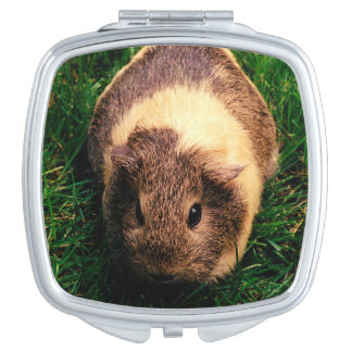 Agouti Guinea Pig in the Grass Mirror For Makeup