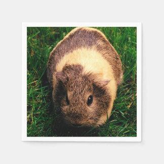 Agouti Guinea Pig in the Grass Paper Napkin