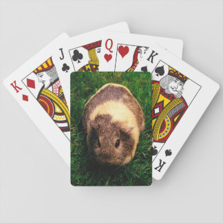 Agouti Guinea Pig in the Grass Playing Cards