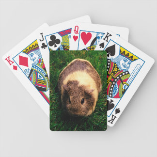 Agouti Guinea Pig in the Grass Poker Cards