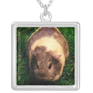 Agouti Guinea Pig in the Grass Silver Plated Necklace