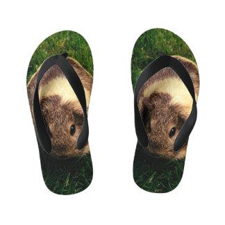 Agouti Guinea Pig in the Grass Thongs