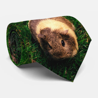 Agouti Guinea Pig in the Grass Tie