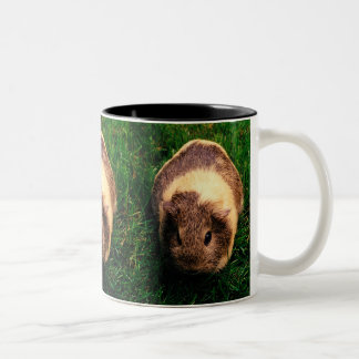Agouti Guinea Pig in the Grass Two-Tone Coffee Mug