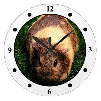Agouti Guinea Pig in the Grass Wall Clocks