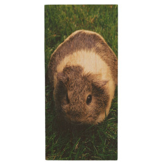 Agouti Guinea Pig in the Grass Wood USB 3.0 Flash Drive