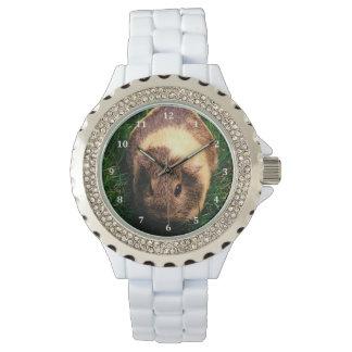 Agouti Guinea Pig in the Grass Wrist Watch