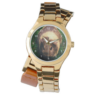 Agouti Guinea Pig in the Grass Wrist Watches