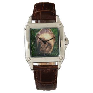 Agouti Guinea Pig in the Grass Wristwatch