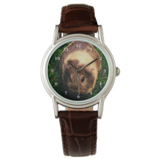 Agouti Guinea Pig in the Grass Wristwatches