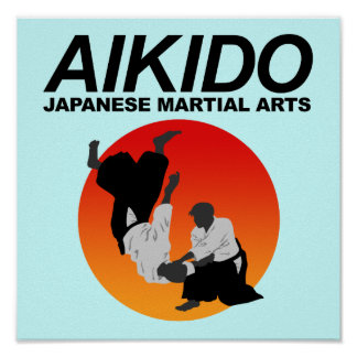 Aikido 3 poster