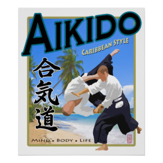 Aikido Caribbean Style Art Print