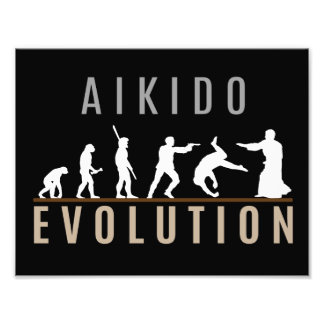 Aikido Evolution Photographic Print