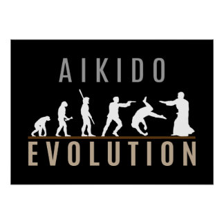 Aikido Evolution Poster