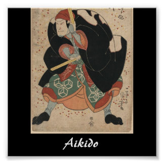 Aikido Japanese Martial Art Poster