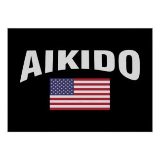 Aikido United States Flag Poster