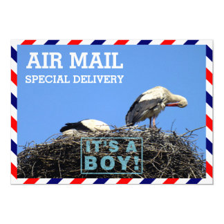 Air Mail Envelope With Storks Sitting in a Nest 13 Cm X 18 Cm Invitation Card