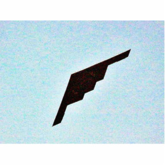 Airplanes Stealth Bomber Standing Photo Sculpture