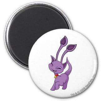 Aisha Purple Magnet