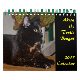 Akira the Tortie Bengal 2017 Two Page Calendar
