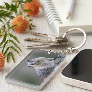 alaska marmot key ring