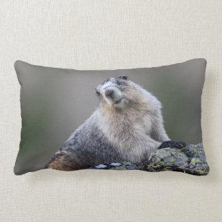 alaska marmot lumbar cushion