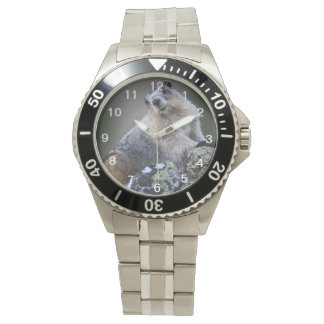 alaska marmot watch
