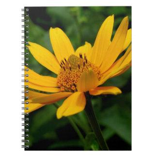 Alaska Shasta Daisy Notebook