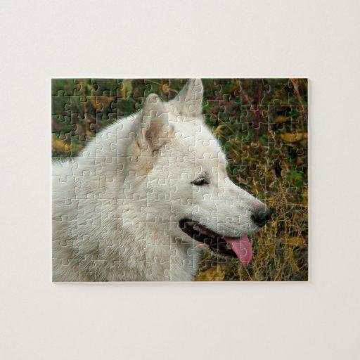 Alaskan Malamute Dog Photograph Jigsaw Puzzles