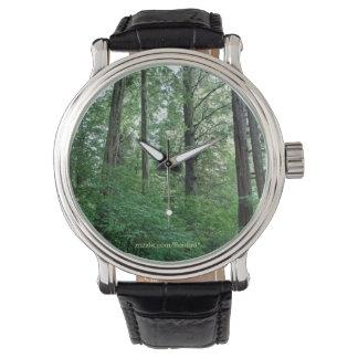 Alaskan Woods Watch