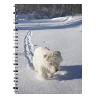 Alberta, Canada Notebook