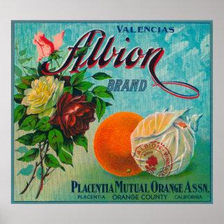 Albion Brand Citrus Crate Label Poster