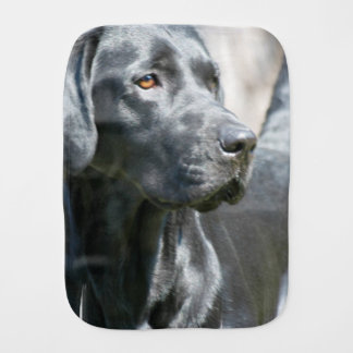 Alert Black Labrador Retriever Dog Burp Cloths