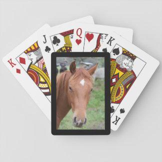 Alert Brown Horse Close-up Black Frame Poker Deck
