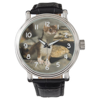 Alert Weasel Watch
