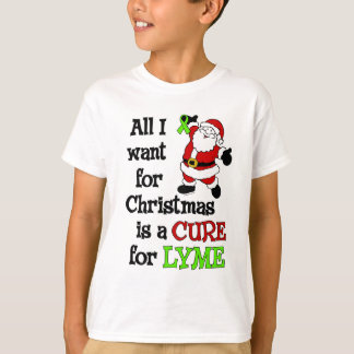 All I Want For Christmas...Lyme T-Shirt