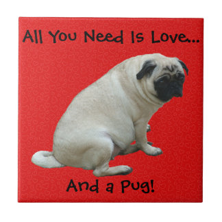 All You Need Is Love...And a Pug! Small Square Tile