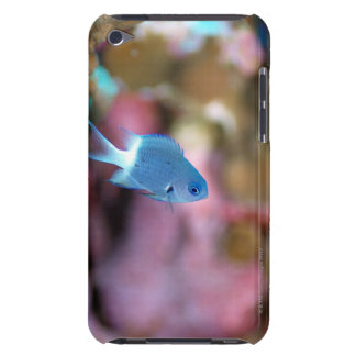 Allen's chromis iPod Case-Mate case