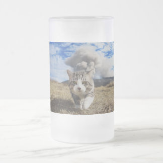 Alley cat niyan good fortune< Activity period > Frosted Glass Beer Mug