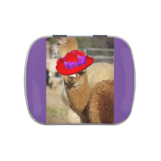 Alpaca Candy Tin